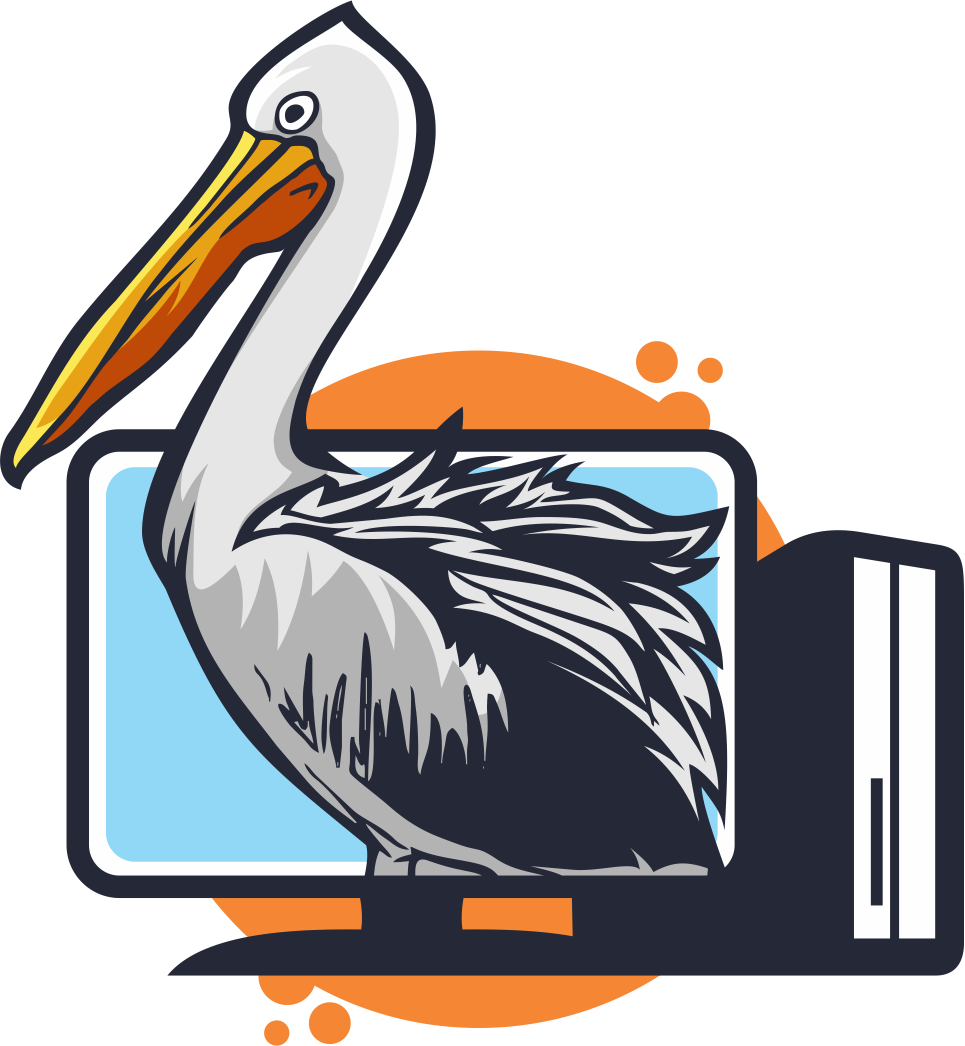 Pelican in front of a computer